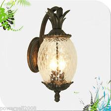 New listing European Style Outdoor Pineapple Shape Glass +Aluminum 1 Light Garden Wall Lamp