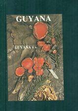 Guyana 1989 Fungi Mini Sheet  MNH Sc 2011