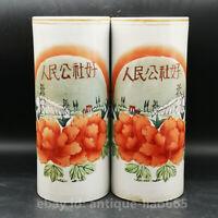 Chinese Ceramics Porcelain Hand-drawn Famille Rose Flower Cap Tube Pot Vase Pair