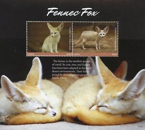 Liberia 2017 MNH Fennec Fox 2v S/S Foxes Wild Animals Stamps