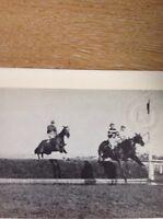 Ephemera Reprint Picture Horse Racing 1921 Grand National Dick Rees  M49
