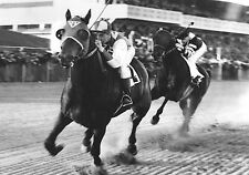 1938 Seabiscuit vs War Admiral PHOTO Horse Race Racing Epic Racetrack Battle
