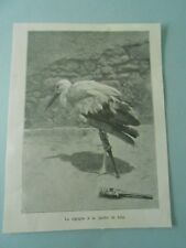 La Cigogne à la Jambe de Bois 1907 Image Print