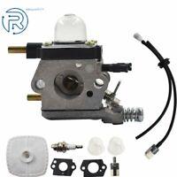 Carb & Maintenance Kit For Mantis Tiller 7222 7225 SV-5C/2  For Zama C1U-K82