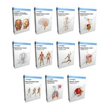 Corpo umano anatomia formazione Bundle Collection