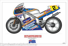 Wayne Gardner 1987 500cc World champion art print - ltd edition of 100 only