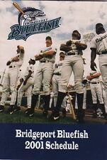 2001 BRIDGEPORT BLUEFISH MINOR LEAGUE BASEBALL POCKET SCHEDULE