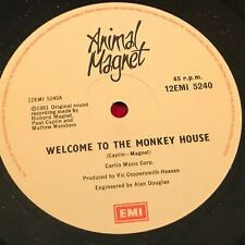 "ANIMAL MAGNET Welcome To The Monkey House 1981 UK 12"" vinyl single EXCELLENT CON"