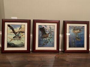 3 Signed Don Ray Framed Prints 12x16 Frames '97 & '99