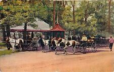 c1910 The Pony Carts at Belle Isle, Detroit, Michigan Postcard