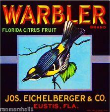 Eustis FLorida Warbler Bird Orange Citrus Fruit Crate Label Art Print