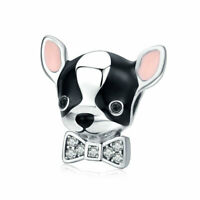 Authentic 925 Sterling Silver The Cute Chihuahua Charm Jewelry For Women Girls