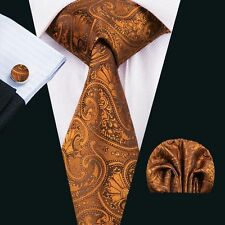 SN-1551 Paisley Orange  Mens Tie Fashion Silk Necktie Hanky Cufflinks Wedding