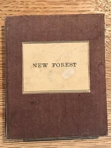 Vintage New Forest Sifton Praed Folding Map on linen