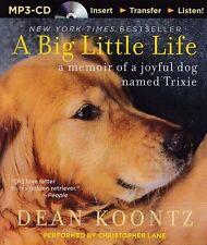 Dean KOONTZ / A BIG LITTLE LIFE       [ Audiobook ]