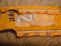 "Lebron James Lakers Jersey City Edition Lore Nike Greats #""S Lore Choice Sz NWT"