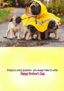 Avanti funny greeting card mom mother's day dog puppy humorous