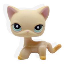 #339 Rare Littlest Pet Shop Orange Short Hair Cat Brooke Raceabout Ranch LPS