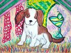Cavalier King Charles Spaniel Martini Melrose Art Print 5 x 7 Collectible Signed