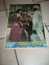 FOTOBUSTA,1954 Elephant Walk.La pista degli elefanti,W.Dieterle,Elizabeth Taylor