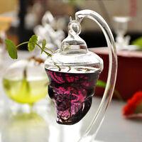 Clear Skull Shape Glass Hanging Vase Bottle Hanging Plant Pot Flower Decor
