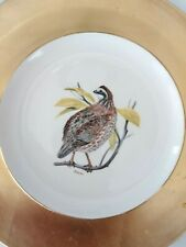 Antique Bobwhite bird Porcelain Plate