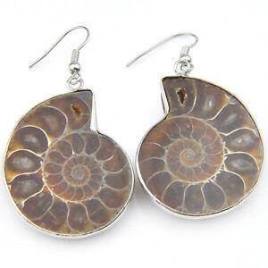 Top Quality Natural Handmade Ammonite Fossil Gems Silver Dangle Hook Earrings