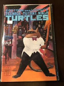 Teenage Mutant Ninja Turtles 23 NM+ Mirage TMNT T-62