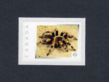 BIRD-EATER TARANTULA =SPIDER arachnid picture postage stamp Canada 2013 [p4i4/2]