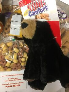 KONG Dog Toy Comfort Kiddos Large Bear with Removable Squeaker Dogs Gift Toys