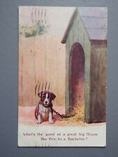 R&L Postcard: 1920's Dog Puppy with Kennel, J Salmon