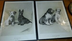 Cecil Aldin Prints X2 The Two Scamps And The Two Sportsmen Vintage