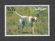 Dog Photo Body Study Portrait Postage Stamp ENGLISH POINTER Somalia 2000 MNH