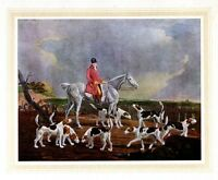 FOXHOUND, HUNTING FOX ON HORSEBACK WITH FOXHOUNDS, HUNT