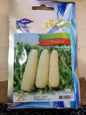 75 Seeds white wax corn sticky plant vegetable organic, home garden outdoor
