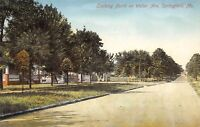 Springfield Missouri~Weller Avenue Homes~Big Porches Behind Trees~1908 Postcard