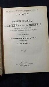 Young: I concetti fondamentali dell'algebra e della geometria. 1919