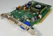 EVGA nVidia GeForce 6500 256MB PCIe DVI VGA PC Video Graphics Card