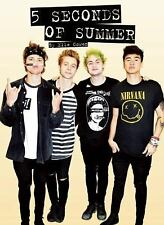 5 Seconds of Summer by Elle Cowen and Mick O'Shea (2015, Paperback)