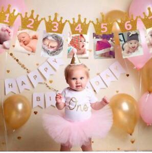 Prince & Princess first birthday Party banner 1-12 Months Garland Newborn Crown