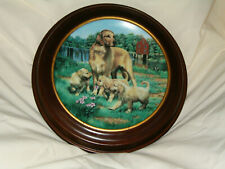 """Vintage Hamilton Collector Plates """" Golden Retrievers!"""" Classic Sporting Dogs"""