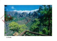 Picture Postcard>>La Palma, Mirador Del Lomo De Las Chozas