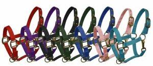 Pony Triple Ply Nylon Western Halter w/ Brass Hardware