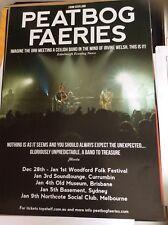 Peatbog Fearies Tour Poster