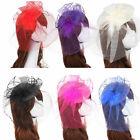 Women Lady Headband Hat Bride Hairband Wedding Fascinator Veil Feather Hard Yarn