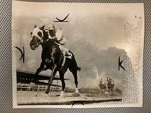 Intentionally - 1959 Jamaica Vintage Horse Racing Press Photo