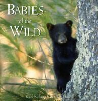 Babies of the Wild by Sams II, Carl R , Hardcover