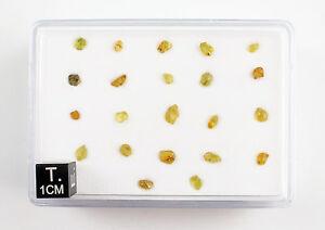20-45Pallasite Jepara Peridot in box ( min. 1 gram )
