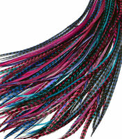 """Real Feather Hair Extensions Bulk 50  7-11""""+ hair feathers-Berry Mix- UK Seller"""