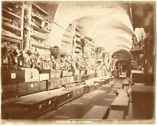 Italie, Palerme, Palermo, Sicile, catacombe dei Cappuccini  Vintage albumen prin
